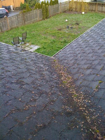 leaking roof Valley Duncan Cowichan Valley BC